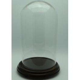 Fanal Urna de cristal  Altura 28 x 15 cm . Diametro