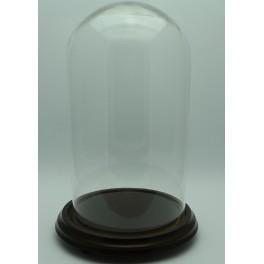 Fanal o urna de cristal Altura 35 x Diametro 22 cm.